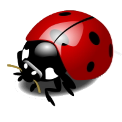 Ladybug Transparent Picture PNG Images