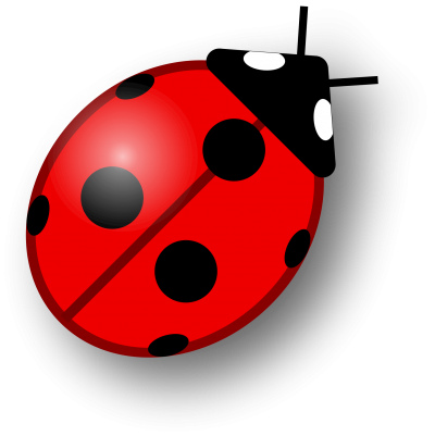 Ladybug Wonderful Picture Images 5 PNG Images