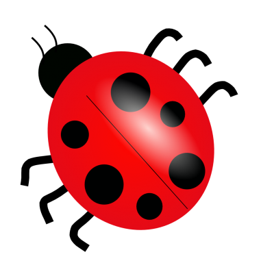 Ladybug Vector 21 PNG Images