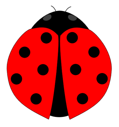 Ladybug Picture 25 PNG Images