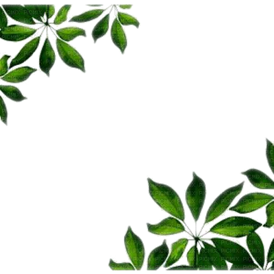 Leaf Frame Wonderful Picture Images PNG Images