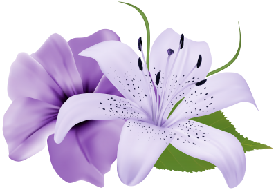 Water Lily Best Png PNG Images