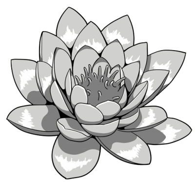 Clipart Photo Lotus Tattoos PNG Images