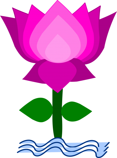 Lotus Transparent Background PNG Images