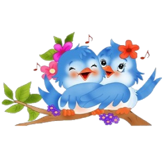 Love Birds Images PNG Images