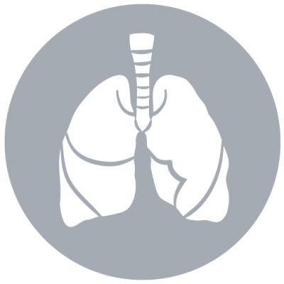 Images Lung Icon Png PNG Images