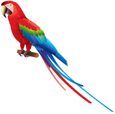 Macaw Hd Photo PNG Images