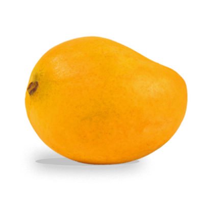 Mango Transparent