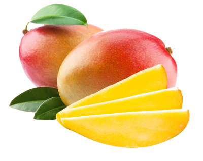Mango Vector PNG Images