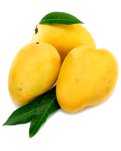 Mango Transparent Picture