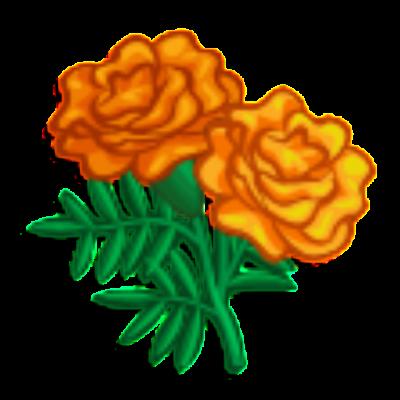 download marigold free png transparent image and clipart rh transparentpng com Orange Marigold Clip Art Marigold Coloring Page