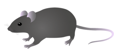 Digital Mouse Free Download PNG Images