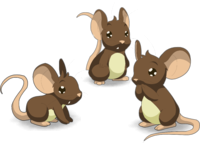 Three Brown Mouse Transparent Png Background Download PNG Images
