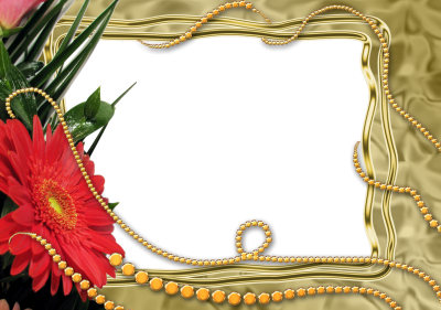 Ornate Floral Transparent Frame Download PNG Images
