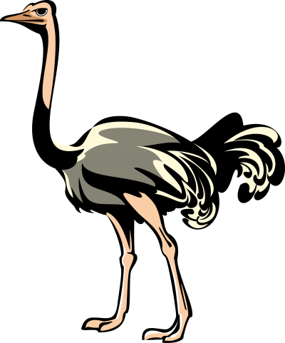 Learn About Heraldry Symbols Ostrich Png PNG Images