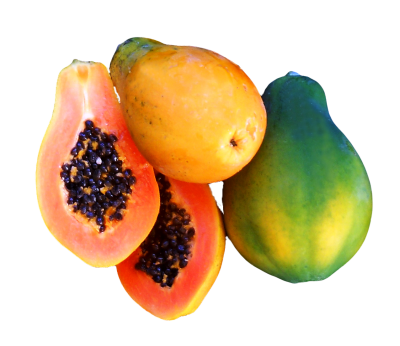 Fresh Papaya Png PNG Images
