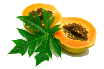 Papaya With Leaf HD Photo Png PNG Images