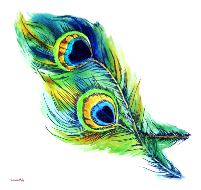 Eye Feather Christian Clip Art PNG Images