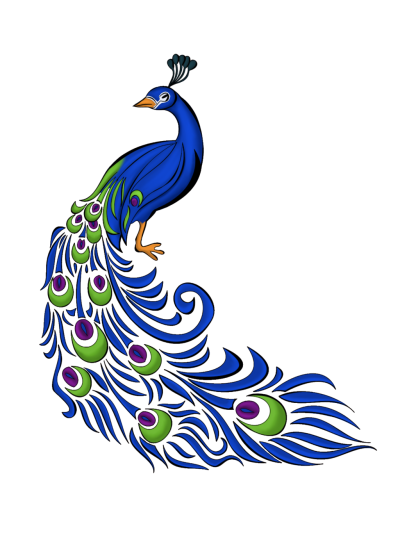 Peacock Feather Vector Graphics Png