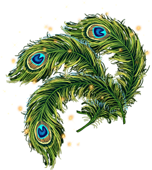 Single, Eye, Peacock, Feathers Png