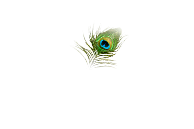 Single Peacock Feathers Png PNG Images