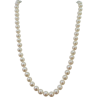 Pure Pearl, Bead, Earring, Necklace, Jewelry, Png PNG Images