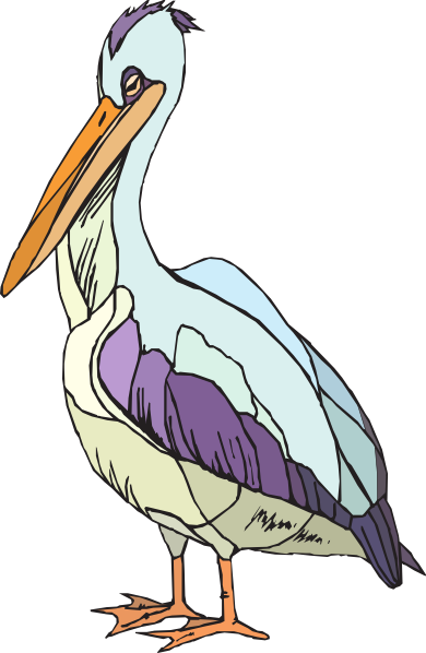 Colorful Pelican Clip Art At Pictures