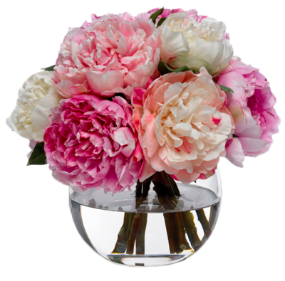 Peony Icon Clipart PNG Images