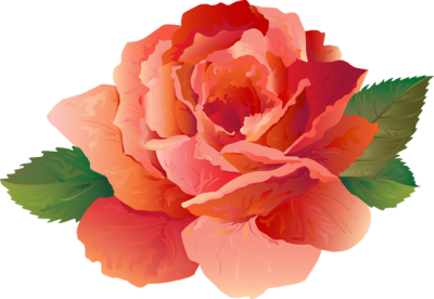 Peony Png PNG Images