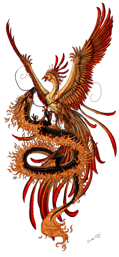 Png Best Phoenix Tattoos PNG Images