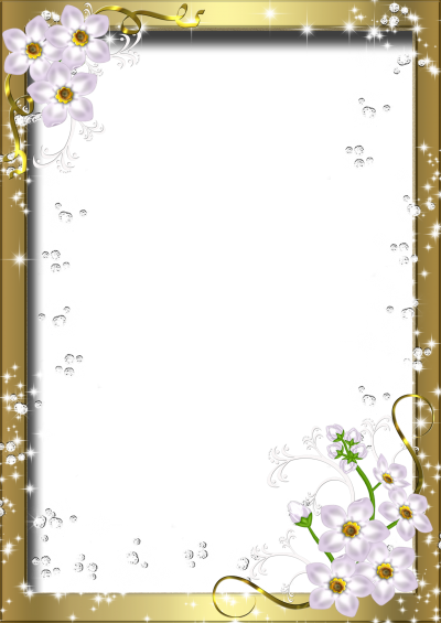 Photo Frame With Flower Border Transparent Png PNG Images