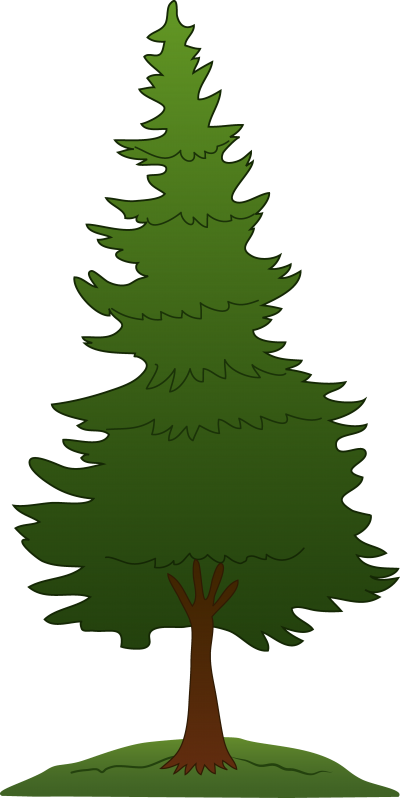 Background Pine Tree 20 PNG Images