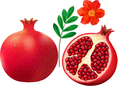 Pomegranate And Flowers Background