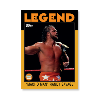 Randy Savage Free PNG 15 PNG Images