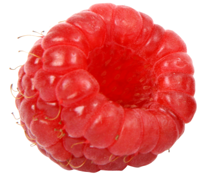 Raspberry Images PNG PNG Images
