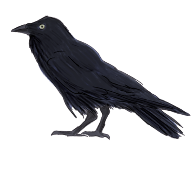 Raven Simple 8 PNG Images