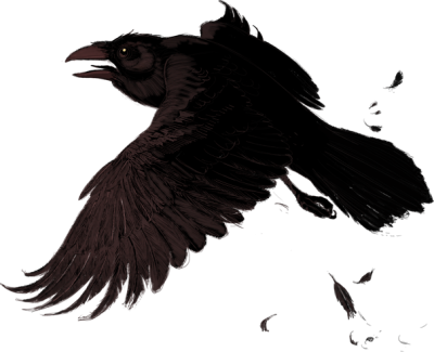 Raven Simple PNG Images
