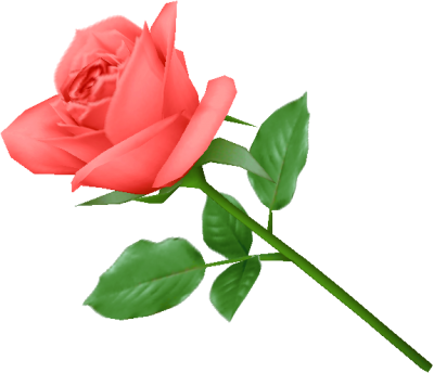Single Pink Rose Image Picture PNG Images