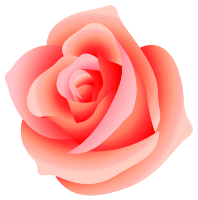 Pink Rose PNG Images