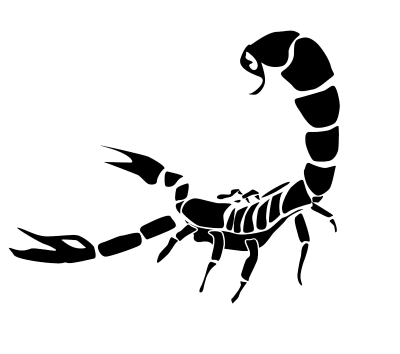 Scorpion Tattoos PNG Picture
