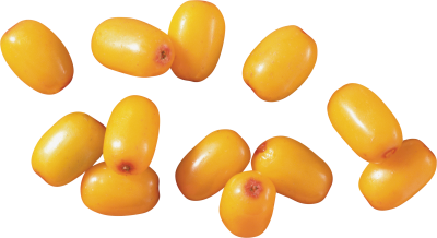 Clipart PNG Photos Sea PNG Images