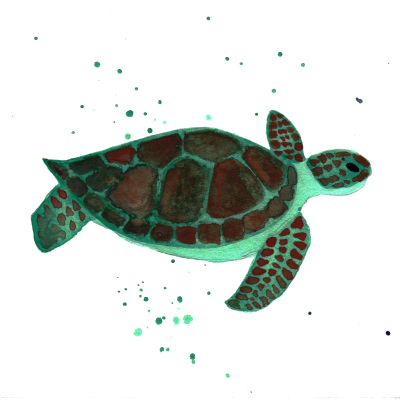 Sea Free Transparent Png PNG Images
