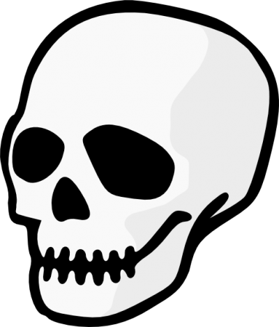 Skeleton Head Picture PNG Images