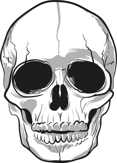 Skeleton Head HD Image