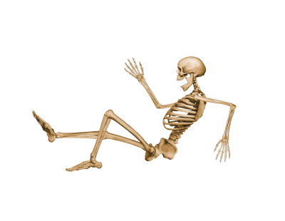 Skeleton Wonderful Picture Images PNG Images
