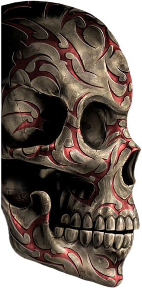 Skull Photos PNG Images