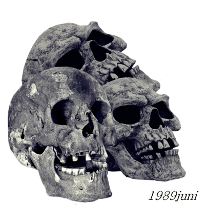 Skull Cut Out Png PNG Images
