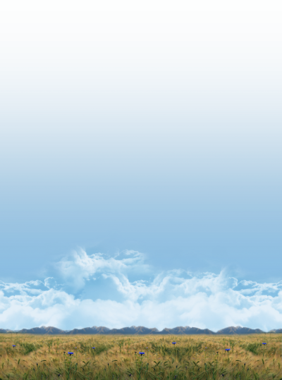 Field Sky Background Photo Long View PNG Images