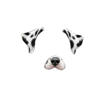 Dogs Snapchat Filters Png Transparent Image