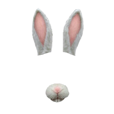 Ear, Nose, Donkey, Gif Png PNG Images